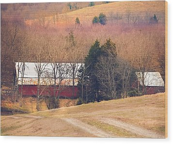 Winter Day On A Tennessee Farm Wood Print by Debbie Karnes