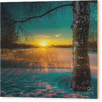 Winter Delight In British Columbia Wood Print by Rod Jellison