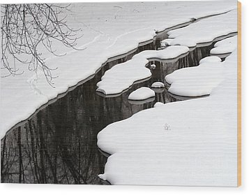 Wood Print featuring the photograph Winter Dreams by Paula Guttilla