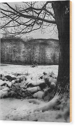 Wood Print featuring the photograph Winter Dreary by Bill Wakeley