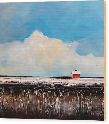Winter Fields Wood Print by Toni Grote