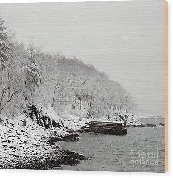 Winter Finery Wood Print by Faith Harron Boudreau