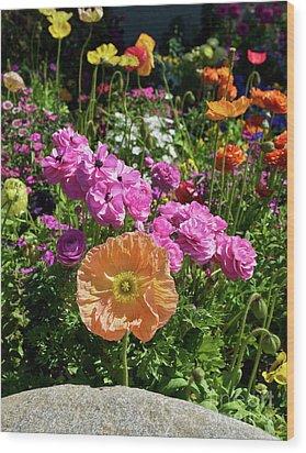 Winter Flowers Wood Print by Gwyn Newcombe