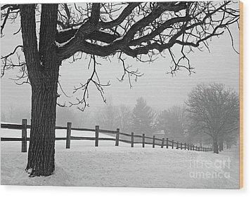 Winter Fog Wood Print