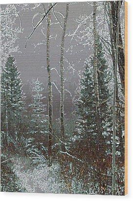Wood Print featuring the digital art Winter Fog by Stuart Turnbull