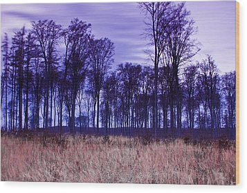 Wood Print featuring the photograph Winter Forest At Sunset In Hungary by Gabor Pozsgai