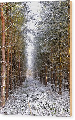 Winter Forest Wood Print by Svetlana Sewell