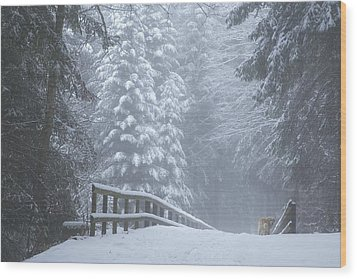 Winter Forest With Golden Retriever Wood Print