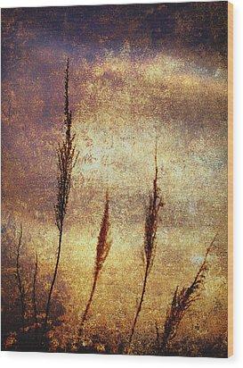 Winter Gold Wood Print by Skip Nall
