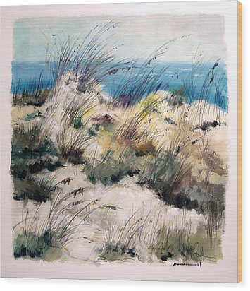 Wood Print featuring the painting Winter Grasses by John Williams