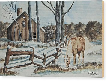 Winter Grazing  Wood Print by Charlotte Blanchard