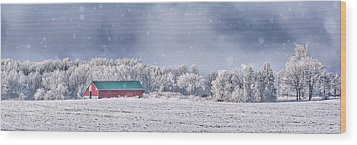 Winter Grey County Wood Print