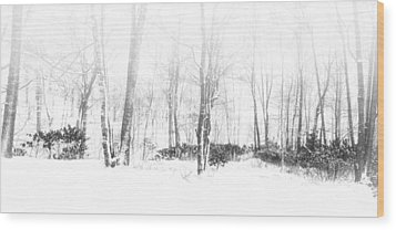 Snowy Forest - North Carolina Wood Print