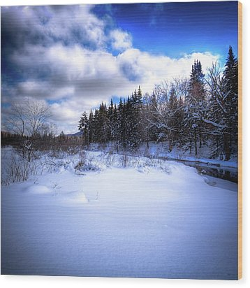 Wood Print featuring the photograph Winter Highlights by David Patterson