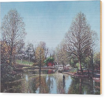 Wood Print featuring the painting Winter Hilliers Garden Hampshire by Martin Davey