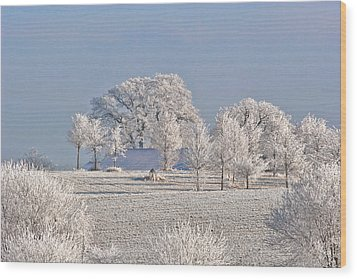 Winter In Canada Wood Print by Christine Till