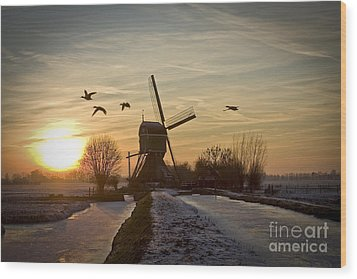 Winter In Holland-2 Wood Print