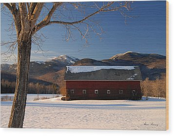 Wood Print featuring the photograph Winter In New England by Alana Ranney
