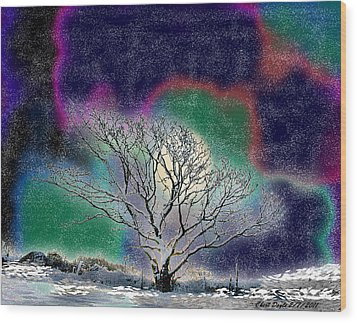 Winter In Oklahoma 2011 Wood Print by Cheri Doyle