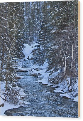 Winter In The Black Hills Wood Print by Dave Clark