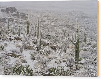 Winter In The Desert Wood Print by Sandra Bronstein