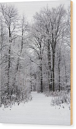 Winter In The Forest Wood Print by Gabriela Insuratelu
