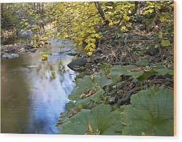 Winter Is Coming On Rock Creek Wood Print by Charlie Osborn
