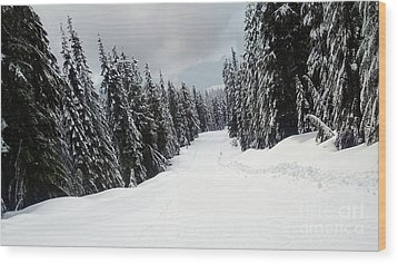 Wood Print featuring the photograph Winter Landscape by Bill Thomson