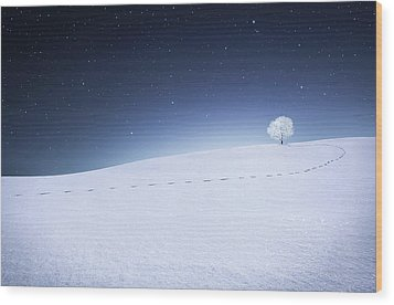 Wood Print featuring the photograph Winter Landscape by Bess Hamiti
