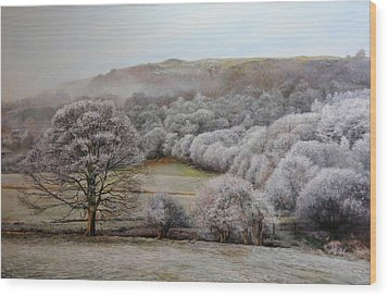 Winter Landscape Wood Print by Harry Robertson