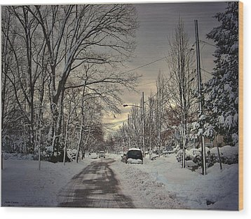 Winter Landscape Wood Print by Mikki Cucuzzo