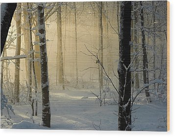 Winter Light Rays Wood Print by Daniel Cadieux
