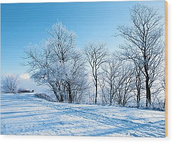 Winter Lights Wood Print by Svetlana Sewell