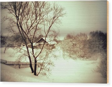 Winter Loneliness Wood Print by Jenny Rainbow