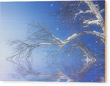 Winter Magic Wood Print by Trudy Wilkerson