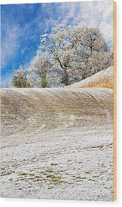 Winter Wood Print by Meirion Matthias