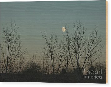 Wood Print featuring the photograph Winter Moon by Ana V Ramirez