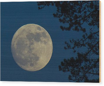 Winter Moon Wood Print by Randy Hall