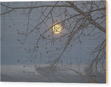 Wood Print featuring the photograph Winter Mornings by Al Swasey