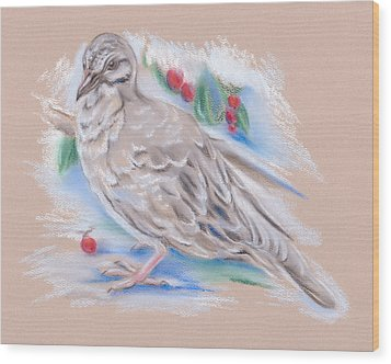 Winter Mourning Dove Wood Print