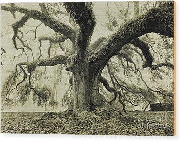 Winter Oak Wood Print by Scott Pellegrin