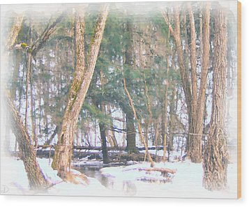 Wood Print featuring the photograph Winter Oasis by Debi Dmytryshyn