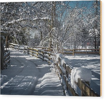 Winter On Ruskin Farm Wood Print