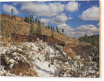 Winter On The Bizz Johnson Trail Wood Print by James Eddy