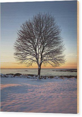Winter On The Coast Wood Print by Eric Gendron
