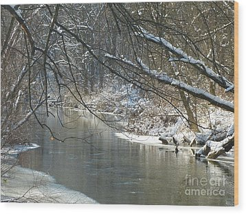 Winter On The Stream Wood Print