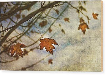 Winter On The Way Wood Print by Rebecca Cozart