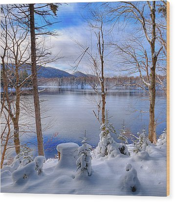 Winter On West Lake Wood Print by David Patterson