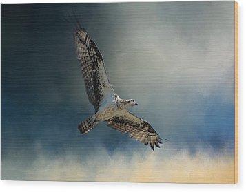 Winter Osprey Wood Print