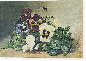 Winter Pansies Wood Print by Louis Bombled